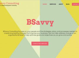 BSavvy Consulting