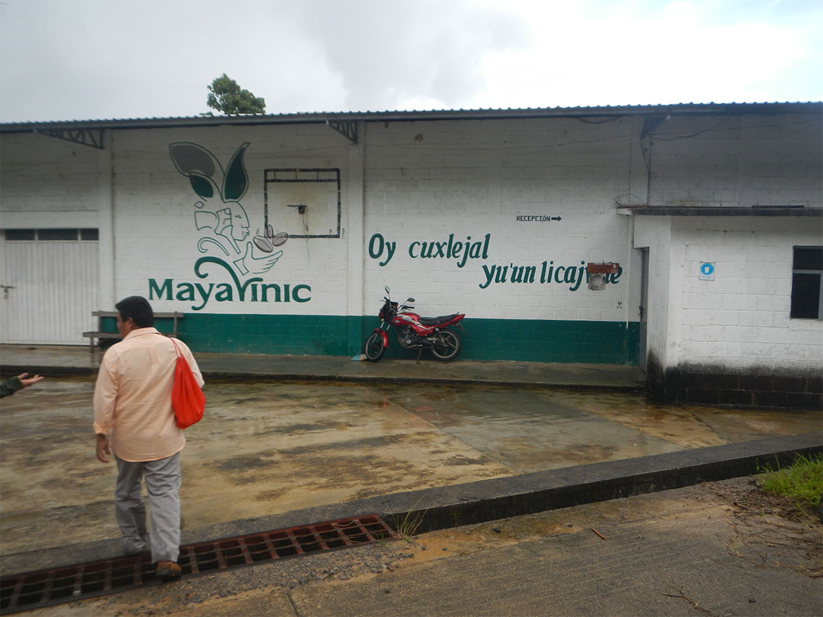 Maya Vinic Coffee Cooperative Fair Trade